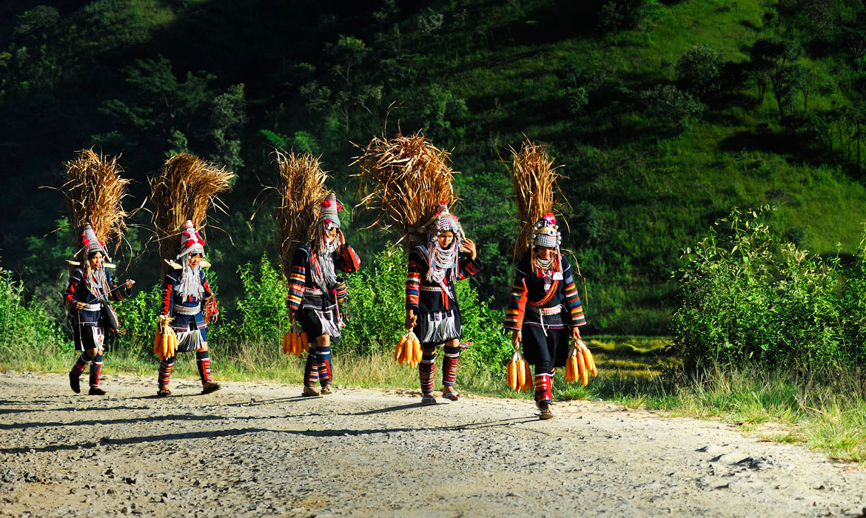 Orchestra myanmar travel discovery tours altavistaventures Gallery